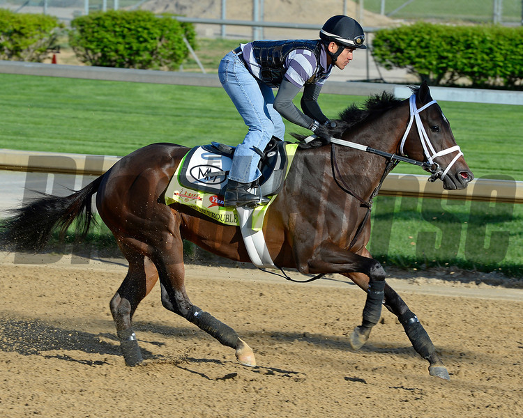 Caption: Vicar's in Trouble with Joel Barrientos<br /> Kentucky Derby contenders in training at the Churchill Downs in Louisville, Ky., on April 19, 2014.<br /> KentuckyDerby 2Works4_23 image277<br /> Photo by Anne M. Eberhardt