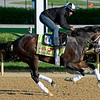 Caption: We Miss Artie<br /> Kentucky Derby contenders in training at the Churchill Downs in Louisville, Ky., on April 19, 2014.<br /> KentuckyDerby 1Works4_23 image054<br /> Photo by Anne M. Eberhardt