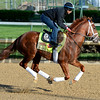 Caption: Danza with Nick Bush<br /> Kentucky Derby contenders in training at the Churchill Downs in Louisville, Ky., on April 19, 2014.<br /> KentuckyDerby 1Works4_23 image044<br /> Photo by Anne M. Eberhardt