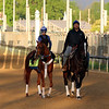 Tapiture Steve Assmussen Churchill Downs Chad B. Harmon
