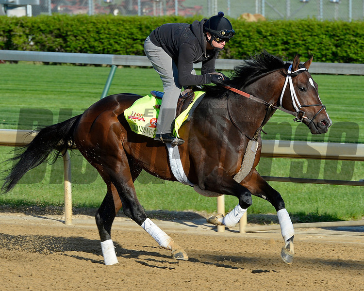 Caption: Commanding Curve with Pedro Velez<br /> Kentucky Derby contenders in training at the Churchill Downs in Louisville, Ky., on April 19, 2014.<br /> KentuckyDerby 1Works4_23 image101<br /> Photo by Anne M. Eberhardt
