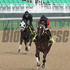 Commanding Curve General A Rod Churchill Downs Chad B. Harmon