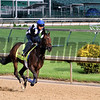 Big Bazinga Churchill Downs Chad B. Harmon