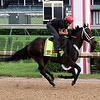 Ride On Curlin Churchill Downs Chad B. Harmon