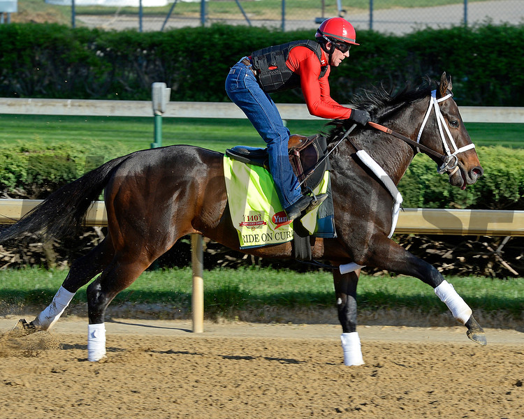 Caption: Ride on Curlin<br /> Kentucky Derby contenders in training at the Churchill Downs in Louisville, Ky., on April 19, 2014.<br /> KentuckyDerby 2Works4_23 image135<br /> Photo by Anne M. Eberhardt