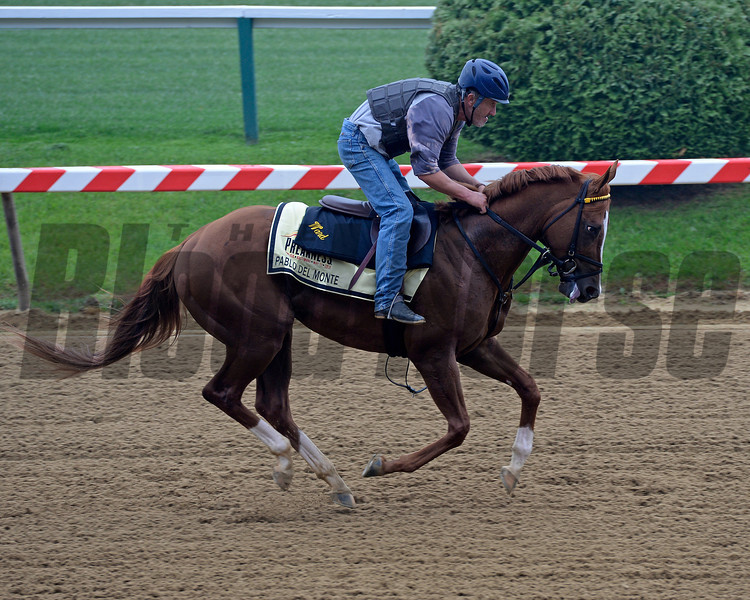 Caption: Pablo del Monte<br /> Preakness Horses on track at Pimlico  in Baltimore, Md., on May 15, 2014.<br /> PreaknessHThursAMWorks2  image968<br /> Photo by Anne M. Eberhardt
