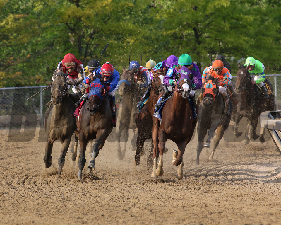 final turn of Preakness<br /> Courtney Heeney photo