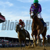 California Chrome, with jockey Victor Espinoza in the irons wins the second leg of thoroughbred racing's Triple Crown with his win in the 139th running of The Preakness Stakes Saturday evening May 17, 2014 at Pimlico Race Course in Baltimore, Maryland.      (Skip Dickstein