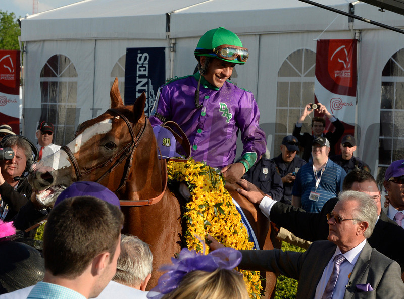 California Chrome, with jockey Victor Espinoza in the irons receives the winner's blanket of flowers after winning the second leg of thoroughbred racing's Triple Crown with his win in the 139th running of The Preakness Stakes Saturday evening May 17, 2014 at Pimlico Race Course in Baltimore, Maryland.   Standing with California Chrome is trainer Art Sherman, lower right.   (Skip Dickstein