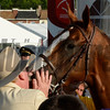 Owner Steve Coburn gives California Chrome a big kiss after he won the second leg of thoroughbred racing's Triple Crown with his win in the 139th running of The Preakness Stakes Saturday evening May 17, 2014 at Pimlico Race Course in Baltimore, Maryland.      (Skip Dickstein
