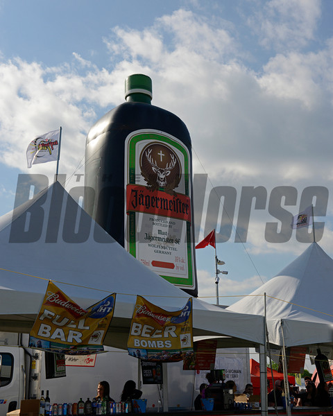 Caption: Jaggermeister <br /> Scenes at Pimlico  in Baltimore, Md., on May 17, 2014.<br /> SaturdayScenes1  image498<br /> Photo by Anne M. Eberhardt