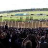 Belmont Race Sequnece #16 - Chad B. Harmon