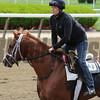Madefromlucky - Belmont, May 21, 2015.<br /> Coglianese Photos/Susie Raisher