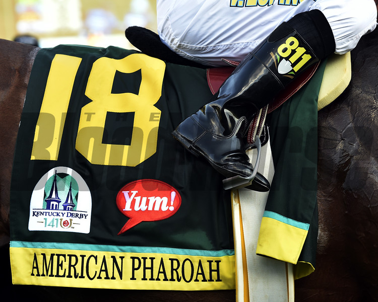 American Pharoah<br /> Kentucky Derby 141<br /> Dave Harmon Photo