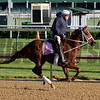 I'm A Chatterbox on the track at Churchill Downs with Larry Jones up on April 28, 2015. Photo By: Chad B. Harmon