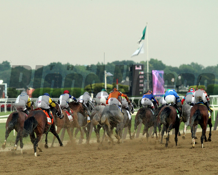 Belmont Stakes Stretch