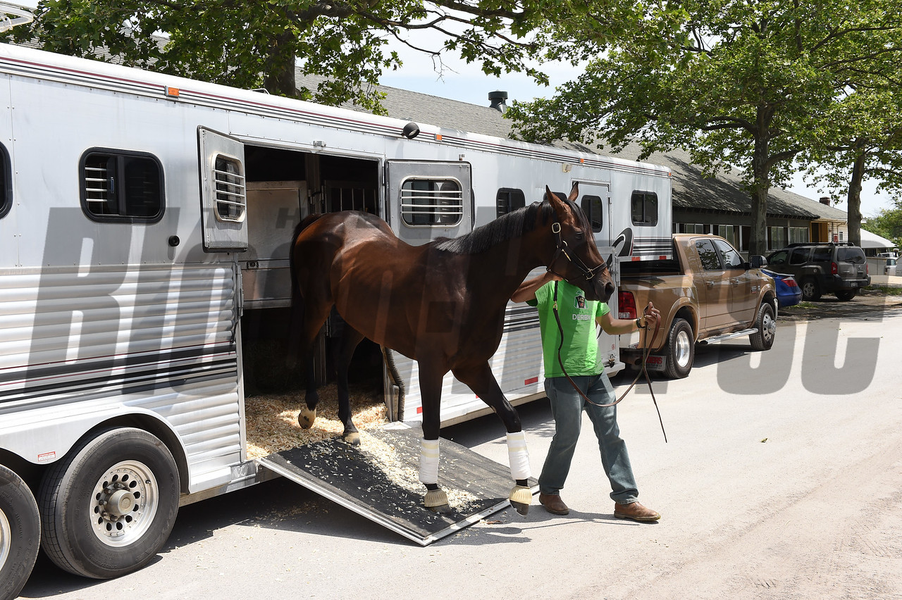 Exaggerator arriving at Belmont Park May 29, 2016<br /> Coglianese Photos