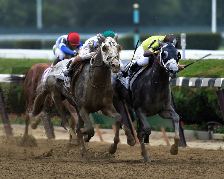 Creator and Destin duel to the finish in 148th running of the Belmont Stakes.    Photo by Skip Dickstein