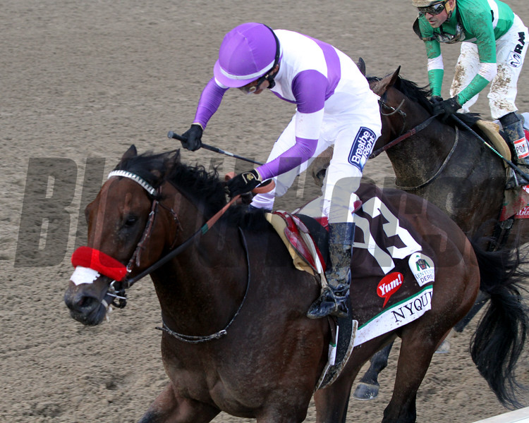 Nyquist Kentucky Derby Chad B. Harmon