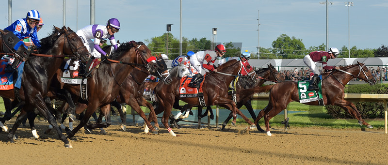 The field of the 142nd Kentucky Derby charges forward after the start of the race.