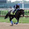 Mor Spirit Churchill Downs Chad B. Harmon