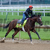 Brody's Cause with Tammy Fox working <br /> Works at Churchill Downs on April 30, 2016, in Louisville, Ky.