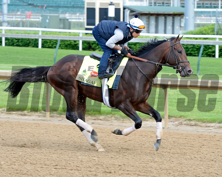 Shagaf<br /> Works at Churchill Downs on May 4, 2016, in Louisville, Ky.