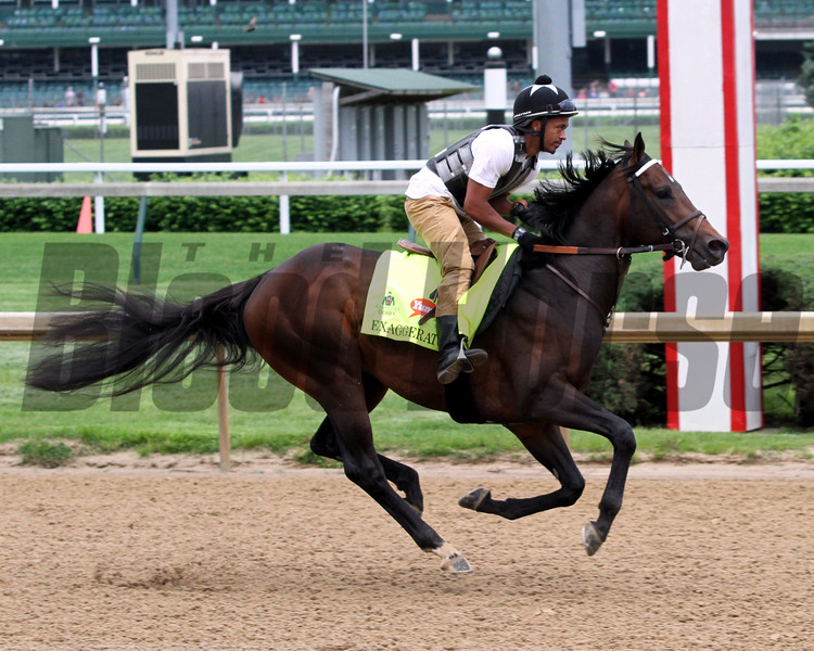 Exaggerator Churchill Downs Chad B. Harmon