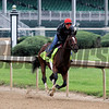 Brody's Cause Churchill Downs Kentucky Derby Chad B. Harmon