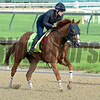 Whitmore<br /> Works at Churchill Downs on May 2, 2016, in Louisville, Ky.
