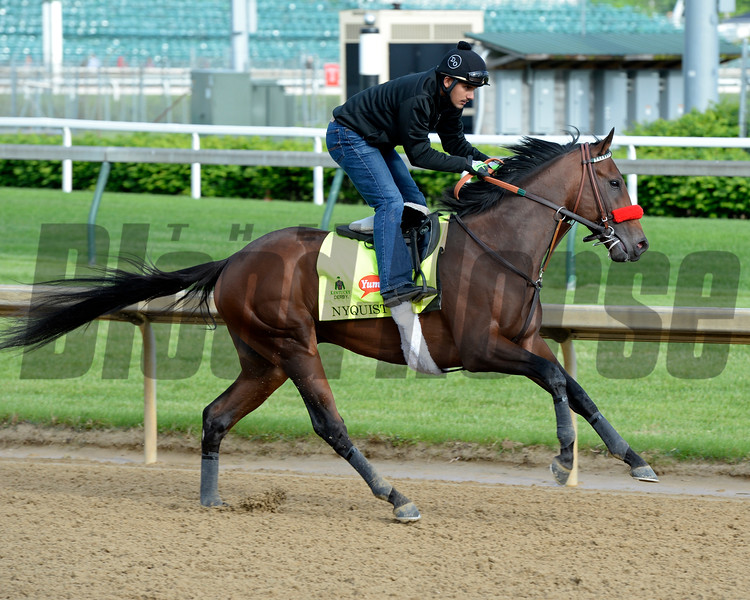 Nyquist<br /> Works at Churchill Downs on May 5, 2016, in Louisville, Ky.