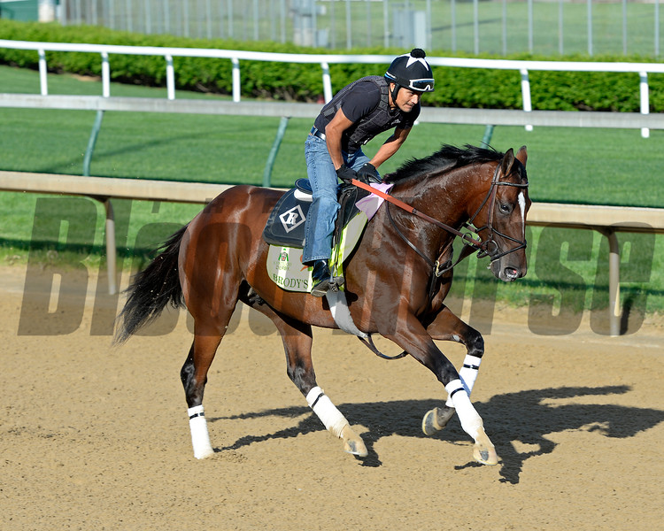 Horses on track at Churchill Downs in Louisille, Ky., on April 29, 2016. Brody's Cause