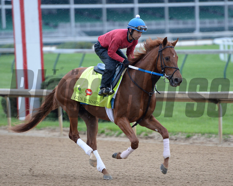 Gun Runner on track at Churchill on April 30, 2016<br /> Anne M. Eberhardt Photo