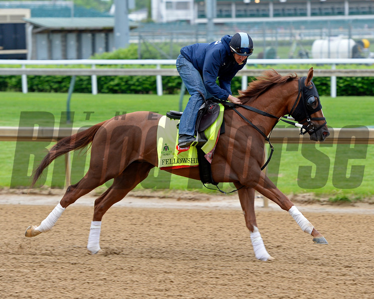 Fellowship<br /> Works at Churchill Downs on May 3, 2016, in Louisville, Ky.