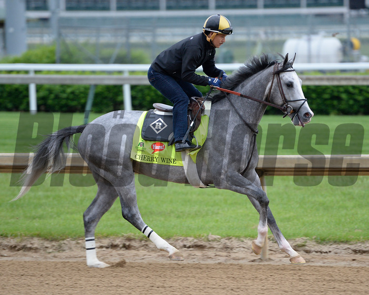 Cherry Wine<br /> Works at Churchill Downs on April 30, 2016, in Louisville, Ky.