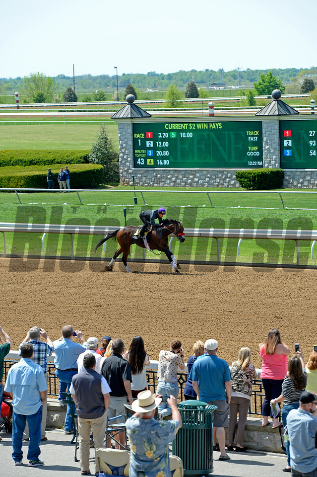 Nyquist in his final work before the Kentucky Derby.