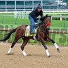 Nyquist<br /> Works at Churchill Downs on May 3, 2016, in Louisville, Ky.