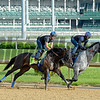 Mor Spirit with Gary Stevens working with workmate.<br /> Works at Churchill Downs on May 2, 2016, in Louisville, Ky.