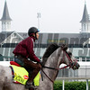 Lani Churchill Downs Chad B. Harmon