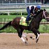 Dazzling Gem Churchill Downs Chad B. Harmon