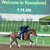 Land Over Sea<br /> Cathryn Sophia worked followed by Land Over Sea working in 5 furlongs in 1:02.20.<br /> Morning works and scenes at Keeneland in Lexington, Ky., on April 23, 2016.