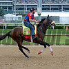 Works at Churchill Downs on May 3, 2016, in Louisville, Ky.