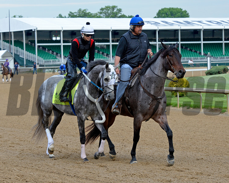 Creator, Steve Asmussen<br /> Works at Churchill Downs on May 4, 2016, in Louisville, Ky.
