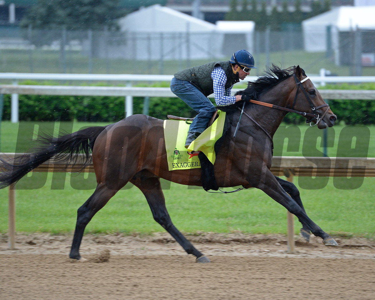 Exaggerator with Kent Desormeaux working<br /> Works at Churchill Downs on April 30, 2016, in Louisville, Ky.
