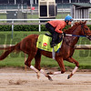 Gun Runner Churchill Downs Chad B. Harmon