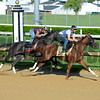 Horses on track at Churchill Downs in Louisille, Ky., on April 29, 2016. Fellowship