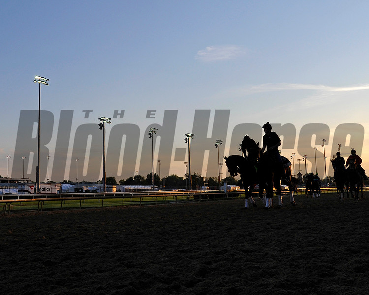 Nyquist with Jonny Garcia and Jack Sisterson on Satire going by in early light.<br /> Works at Churchill Downs on May 4, 2016, in Louisville, Ky.