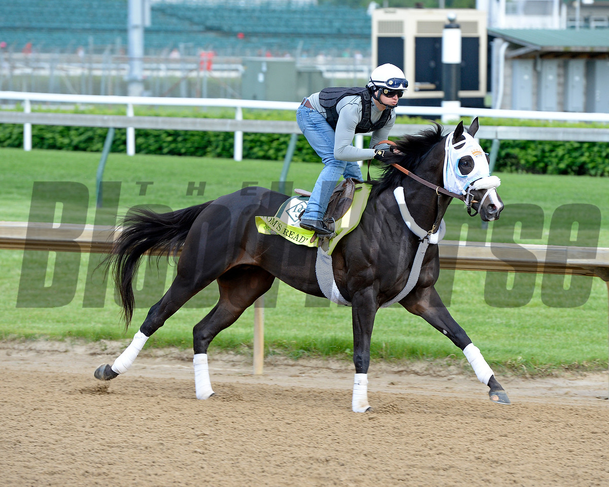 Tom's Ready<br /> Works at Churchill Downs on May 4, 2016, in Louisville, Ky.