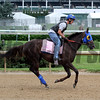 Venus Valentine Churchill Downs Chad B. Harmon