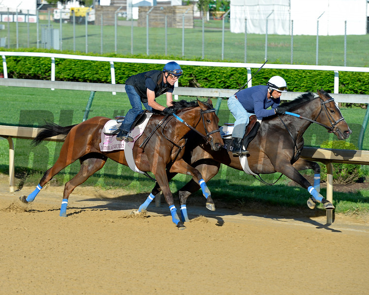 Horses on track at Churchill Downs in Louisille, Ky., on April 29, 2016. Dothraki Queen